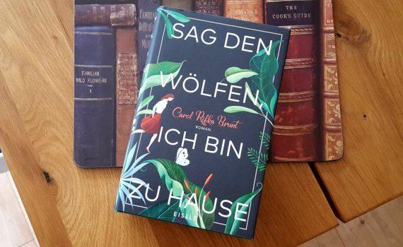 Carol Rifka Brunt - Sag den Wölfen, ich bin zu Hause